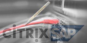 health check Citrix SAP